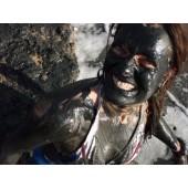 Dead Sea mud!