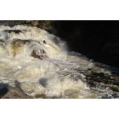 Grade 5 rapids on Moose river