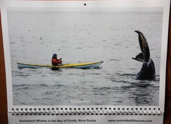 2015 Sea kayaking Calendar